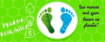 Qual é a sua pegada ecológica? - Ponto Biologia
