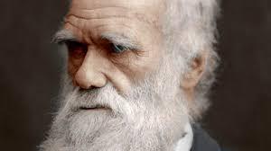 Aventuras na História · A Origem das Espécies: 160 anos da maior obra de  Charles Darwin