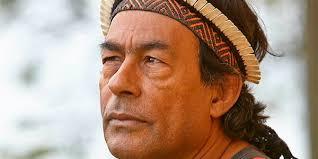Ailton Krenak, professor Honoris Causa em sabedoria indígena -  GreenMe.com.br