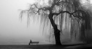 Depressão: vida cinza e sem gosto | Blog Psicoblog da Rede Globo